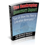 Bankruptcy Recovery Niche Package
