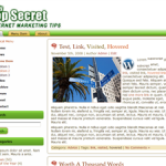 Free PLR Top Secret Wordpress Theme