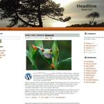 Unrestricted PLR Wordpress Theme
