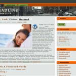 Free Unrestricted PLR Wordpress Theme