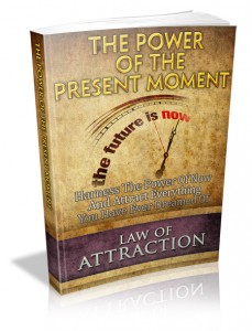 Power_Of_The_Present_Moment_MRR_Ebook