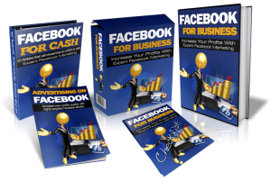 Facebook For Business – Package With Mrr