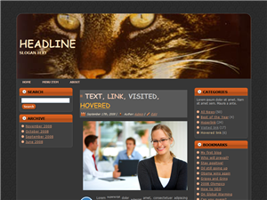 Cats-Eye-PLR-Wordpress-Theme