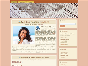 PLR Newspaper WordPress Theme