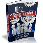 Blog Flipping MRR Ebook