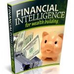 Financial Intelligence PLR Ebook