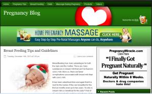 Pregnancy-PLR-Blog