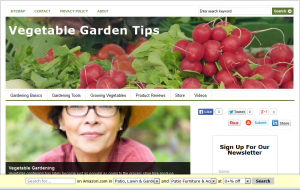 Vegetable_PLR_Blog