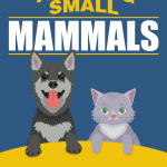 Training-Small-Mammals