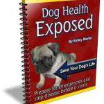 dog health plr