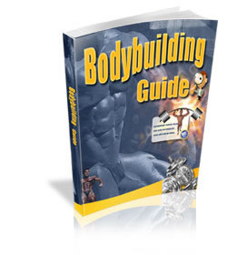 MRR Bodybuilding Ebook