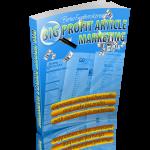 Big Profit Article Marketing