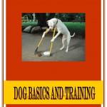 Free PLR Dog Training Ebook
