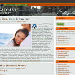 Free Unrestricted PLR Wordpress Theme