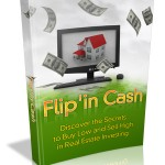 Flipn'Cash-Ebook