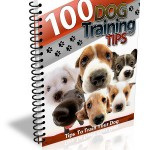 Dog Training Tips Ebook