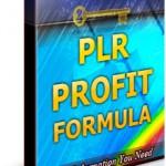PLR Profit Formula Ebook