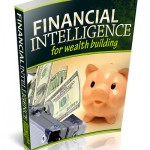 Financial Intelligence PLR Ebook