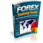 The-Forex-Training-Guide-Ebook