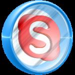 skype report