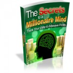 Wealth MRR Ebook