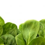 Healthy-Food-Videos