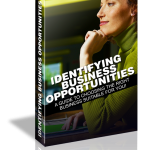 identifying business ebook MRR