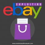 exploiting-ebay-MRR-audio-book
