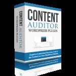 contentauditor-wordpress-auditor