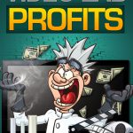 Video_Lab_Profits