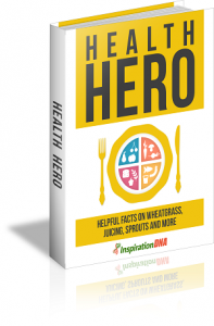 Health Hero MRR Ebook